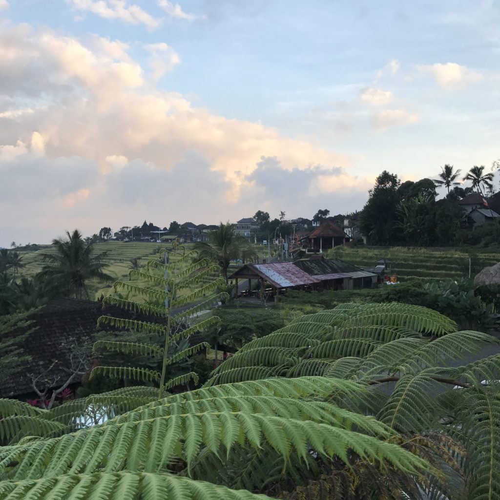 img 5503 1024x1024 Singaraja, Sekumpul Waterfalls et Jatiluwih Rice Terrace