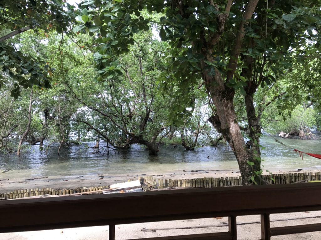 img 5682 1024x768 Manado, Bunaken : street food, snorkeling et bar reggae