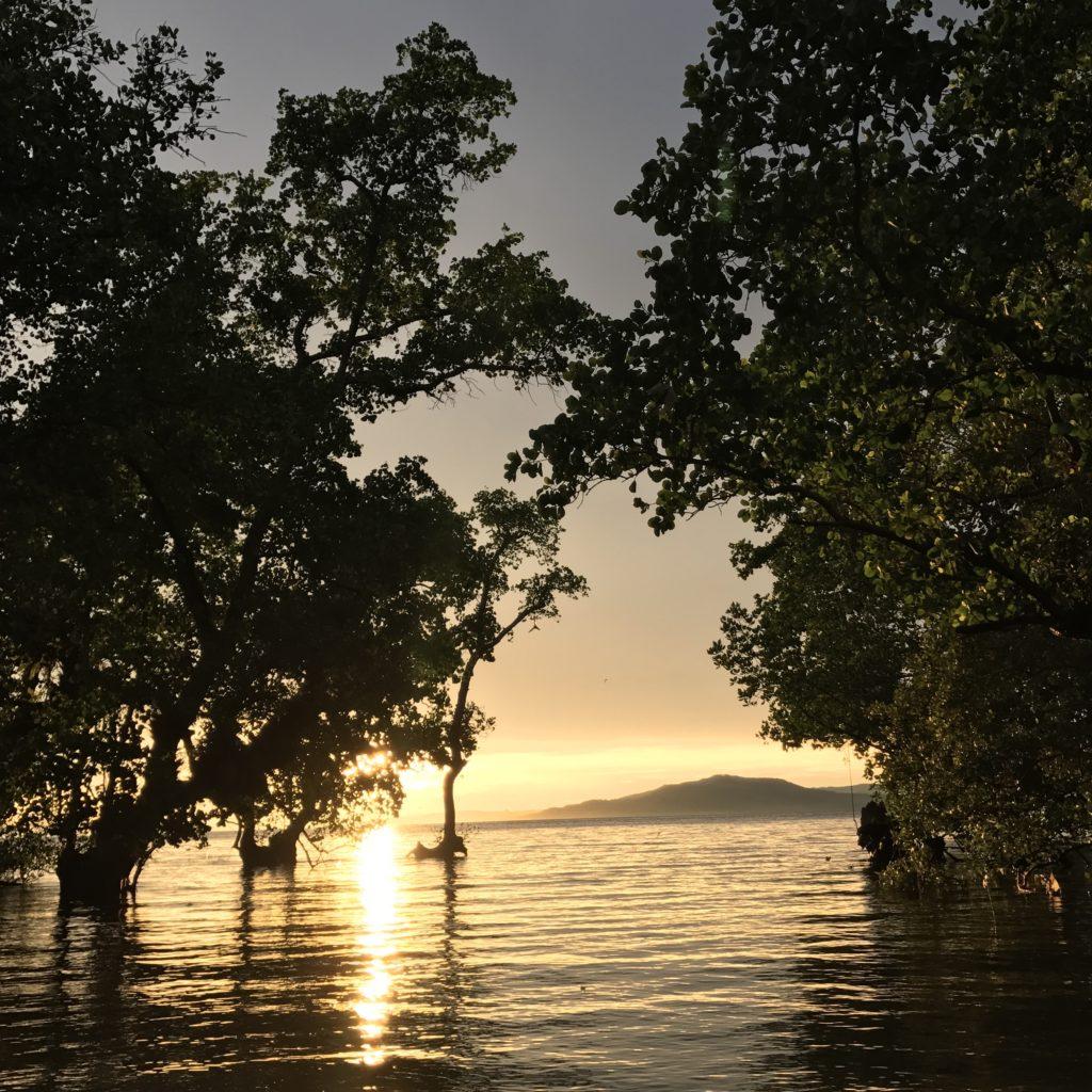 img 5769 1024x1024 Manado, Bunaken : street food, snorkeling et bar reggae