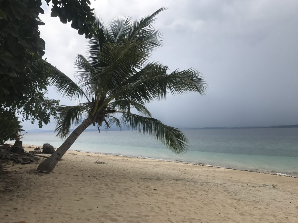 img 5858 1024x768 Manado, Bunaken : street food, snorkeling et bar reggae
