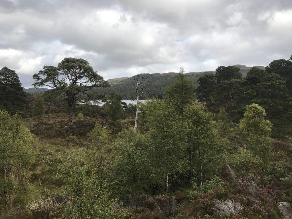 img 1322 1024x768 Inverness, Loch Ness et Cairngorms : au pays de leau fraîche ... et du whisky