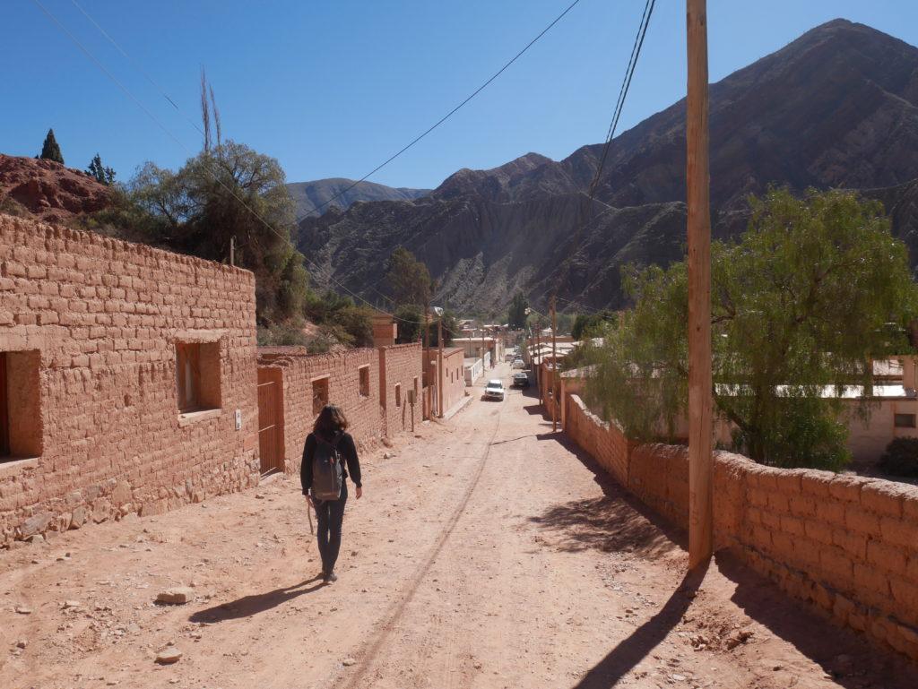 P1030093 1024x769 Salta, Cafayate, Purmamarca : les beautés du Nord Ouest Argentin