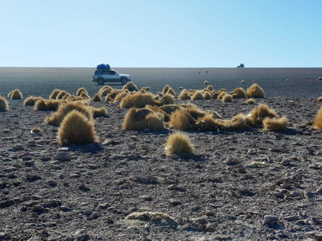 P1030254 1024x769 Sud Lipez, Salar dUyuni, Tupiza : Roadtrip en Bolivie