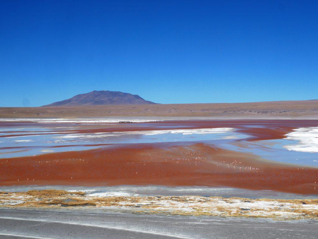 P1030329 1024x769 Sud Lipez, Salar dUyuni, Tupiza : Roadtrip en Bolivie