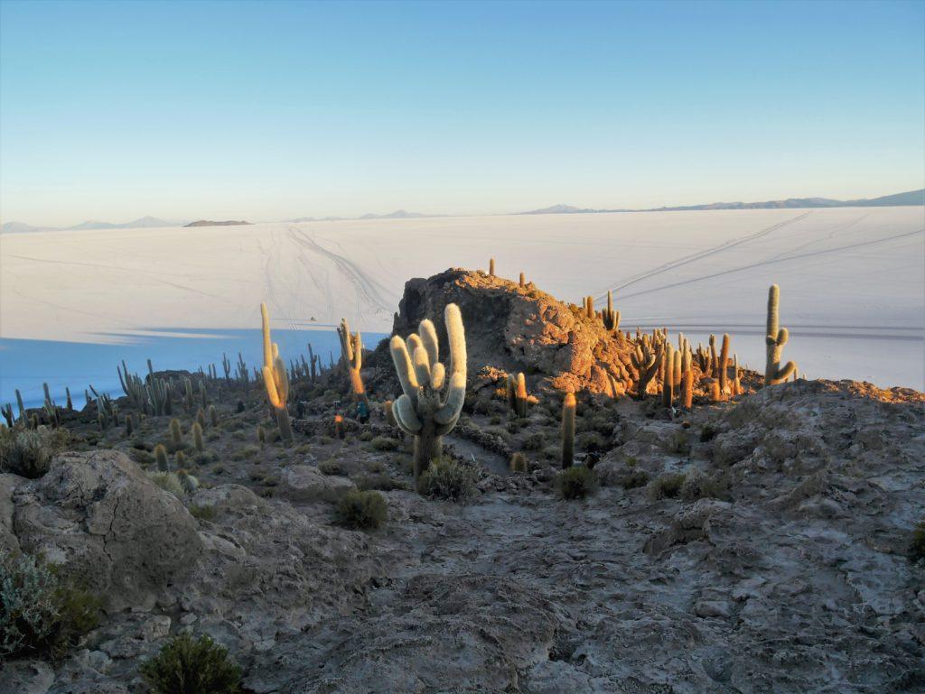 P1030519 1024x769 Sud Lipez, Salar dUyuni, Tupiza : Roadtrip en Bolivie
